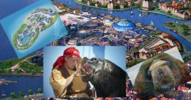 Dolfinarium Delfinarium Harderwijk Holandia 2020