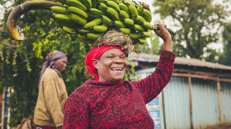 Holandia banany