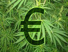 narkotyki Holandia