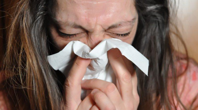 alergia katar sienny Holandia wiosna 2020