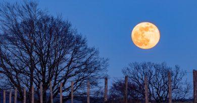 Holandia super księżyc 2020