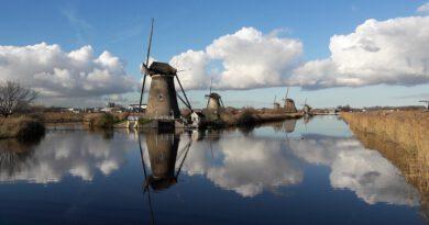 Holandia praca ciekawostki quiz
