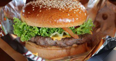 Holandia hamburger fast food 2020