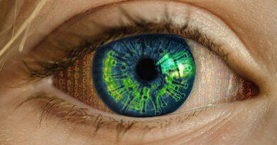 Holandia koronawirus plotki mity WHO 2020
