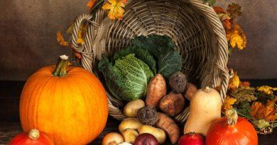 Holandia jesień dieta 2020 koronawirus