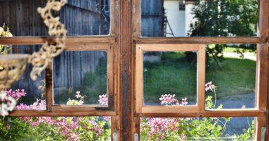 Holandia wieś ucieczka gospodarstwo rolne 2020