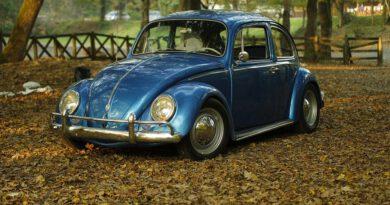 Holandia VW APK 2020 2021 przegląd techniczny