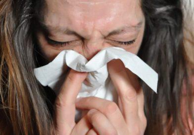 Holandia alergia zdrowie koronawirus pyłki katar 2021 wiosna