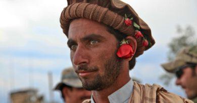 Holandia Afganistan mieszkania socjal uchodźcy